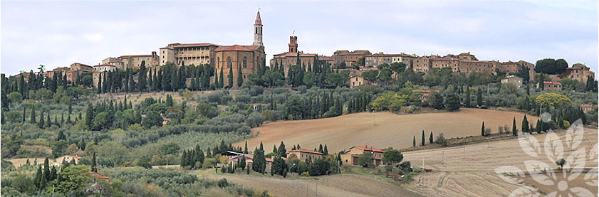 holiday home in tuscany, cortona, Arezzo